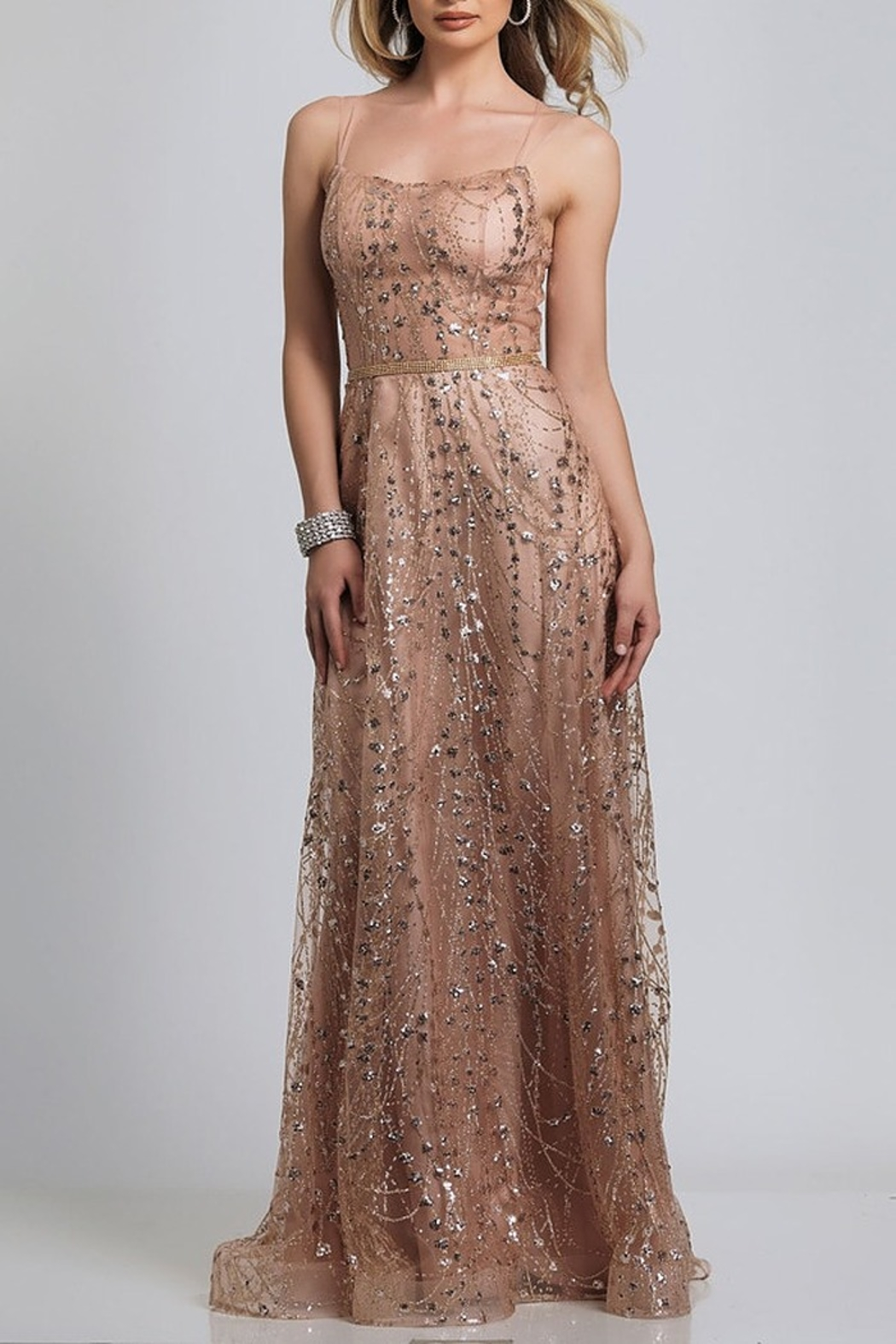 Dave and Johnny A-Line Sheer Tie Back Gown - Main Image