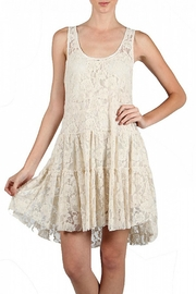 A'reve Lace Embroidered Dress - Front cropped