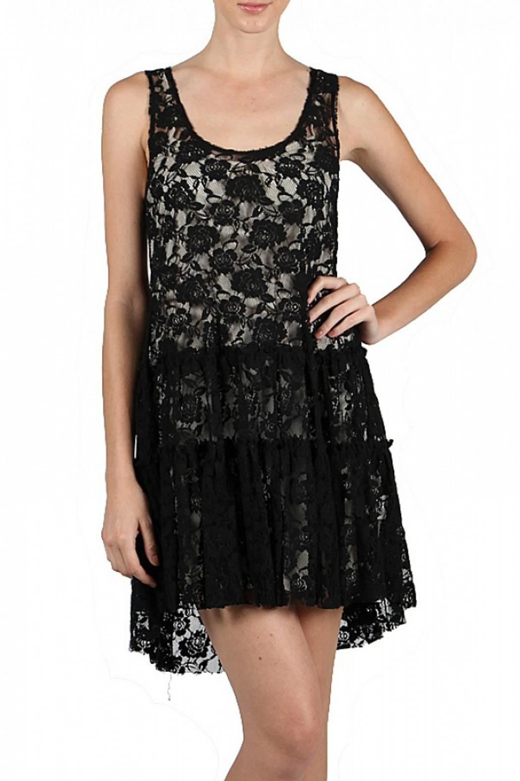 A'reve Lace Embroidered Dress - Front Cropped Image