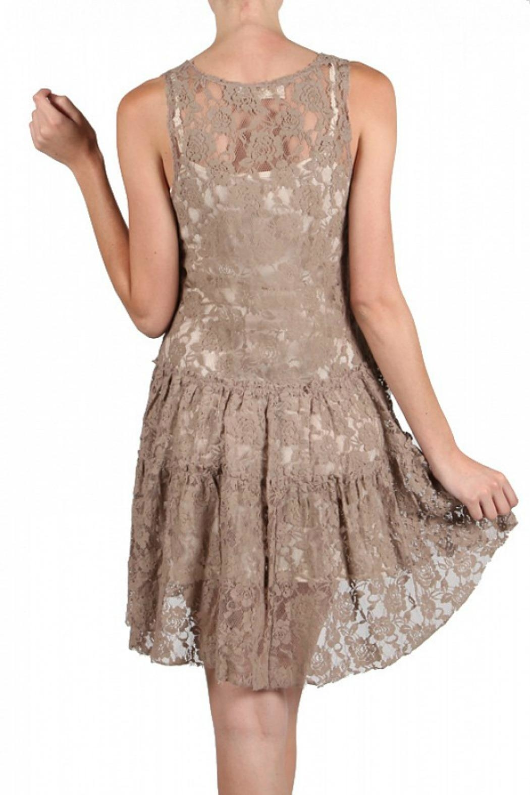 A'reve Lace Embroidered Dress - Back Cropped Image