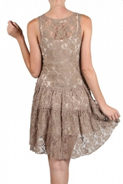A'reve Lace Embroidered Dress - Back cropped