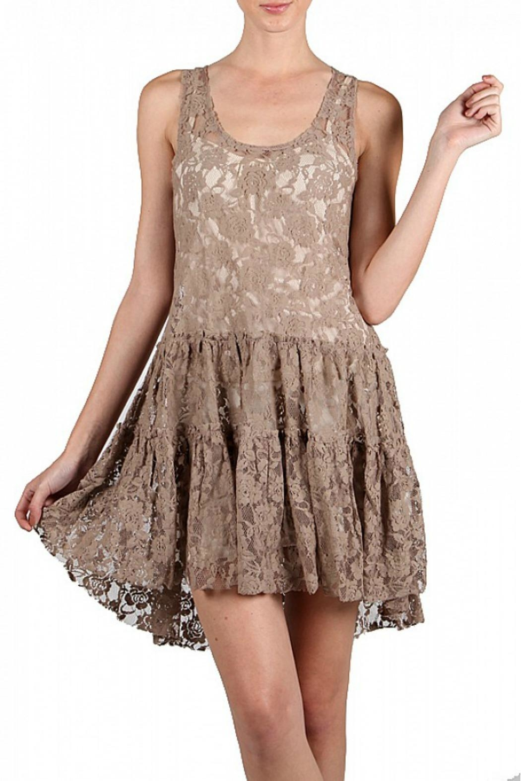 A'reve Lace Embroidered Dress - Main Image