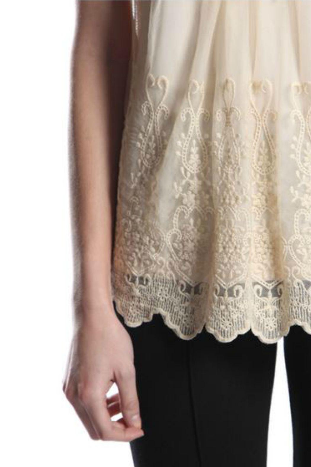 A'reve Lace Sleeveless Top - Back Cropped Image
