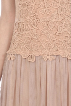 A'reve Pink Embroidered Tulle - Alternate List Image