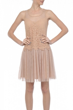 Shoptiques Product: Pink Embroidered Tulle