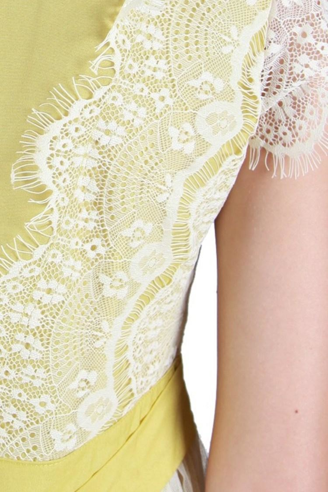 A'reve Vintage Lime Lace - Side Cropped Image