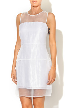 Shoptiques Product: Silver Sheer Dress