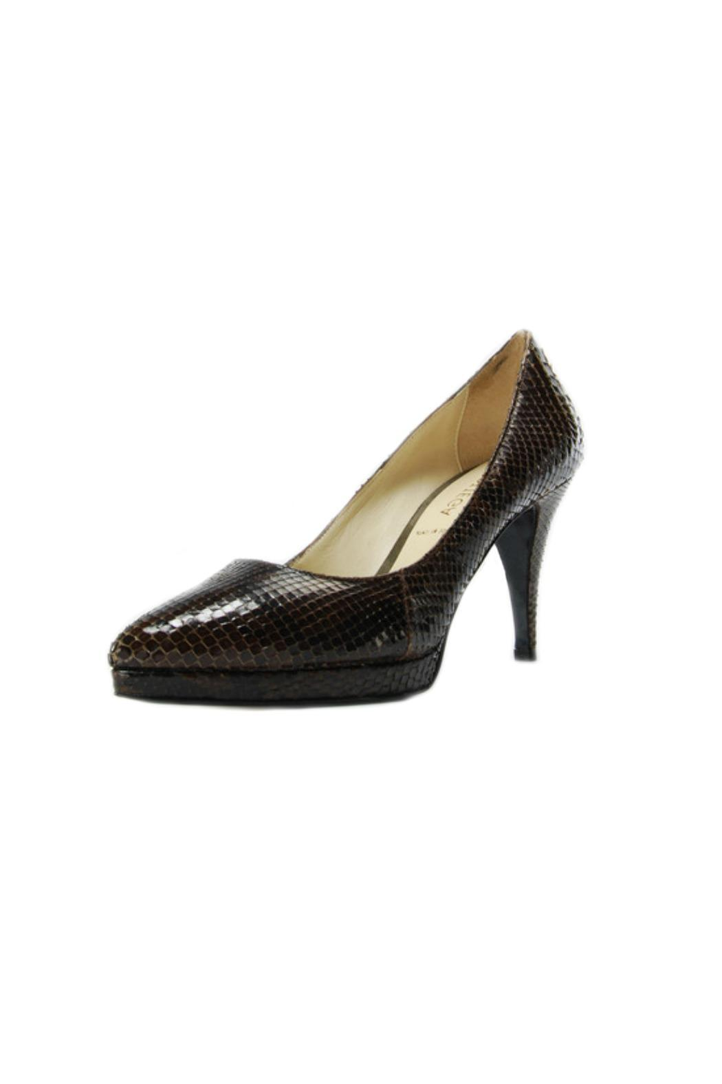 A. Bottega  Brown Python Pump - Main Image