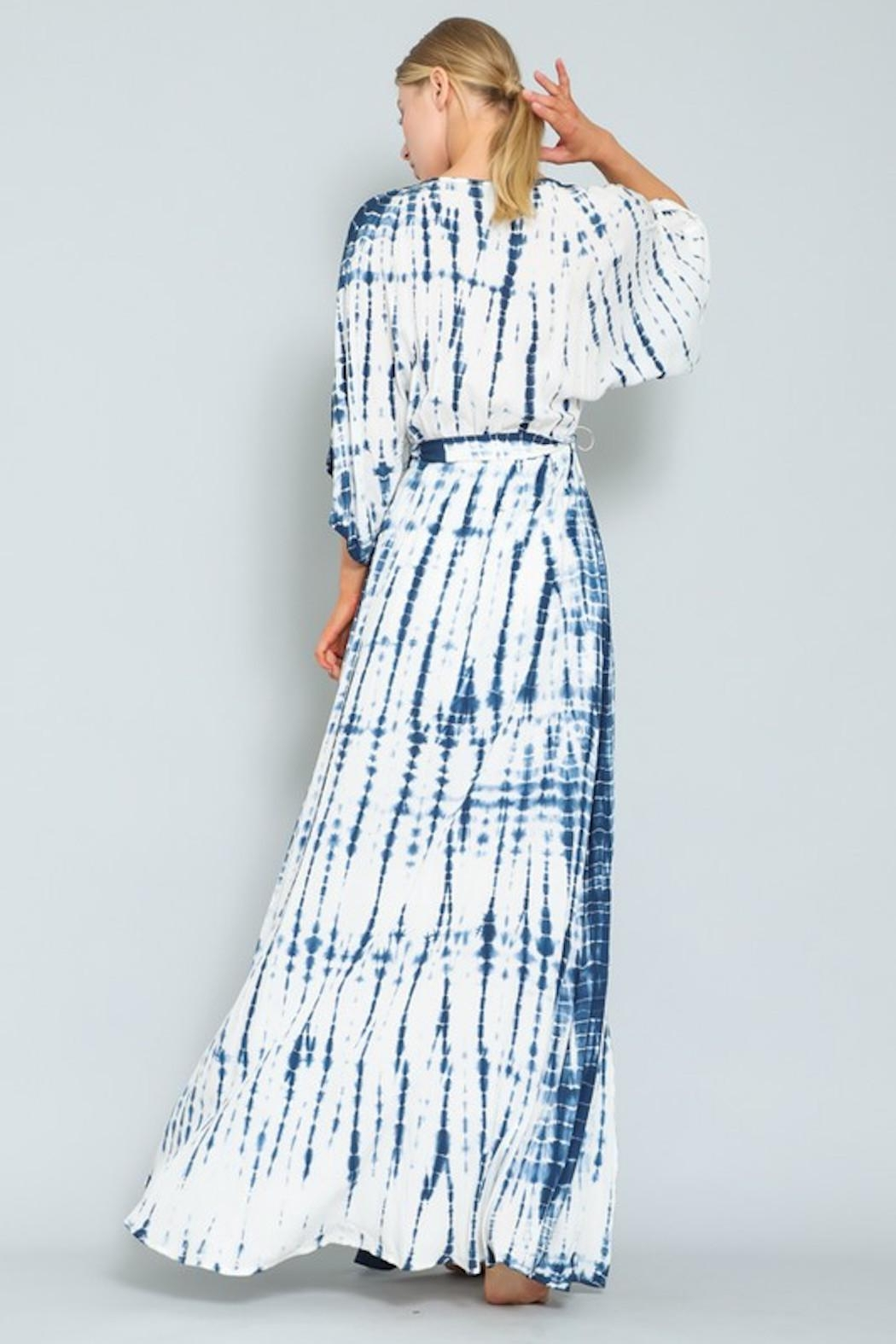 AAKAA Blue Wave Maxi - Back Cropped Image