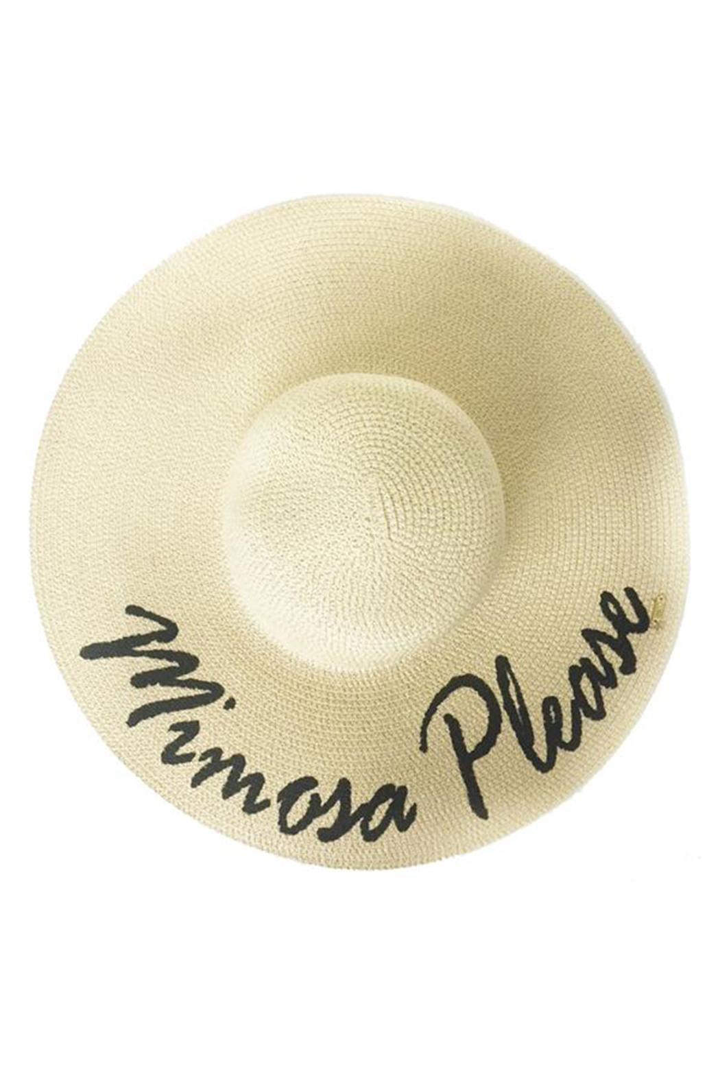 Abaco Beach Company Mimosas Beach Hat - Front Cropped Image