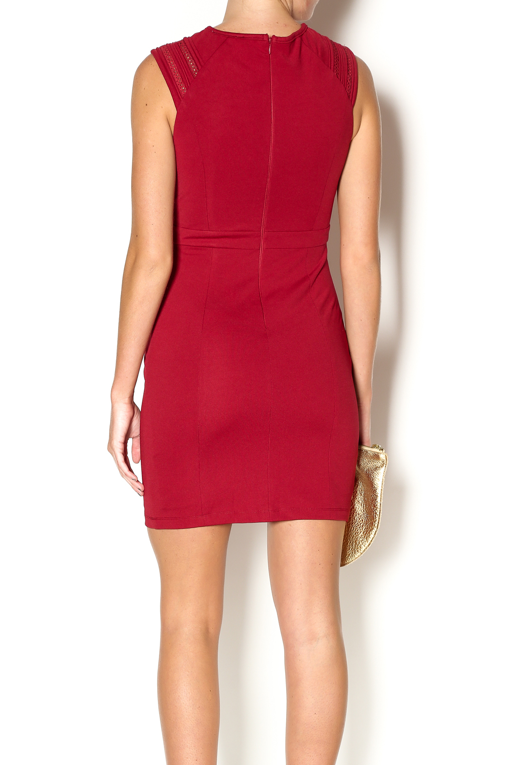 Abby & Taylor Burgundy Sleeveless Dress - Back Cropped Image