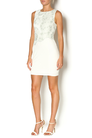 Abby & Taylor Sage Lace Top Dress - Front full body