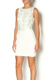 Abby & Taylor Sage Lace Top Dress - Front cropped