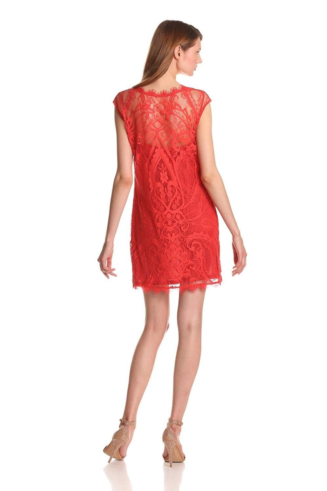 Nicole Miller Abby Lace Dress - Front Full Image