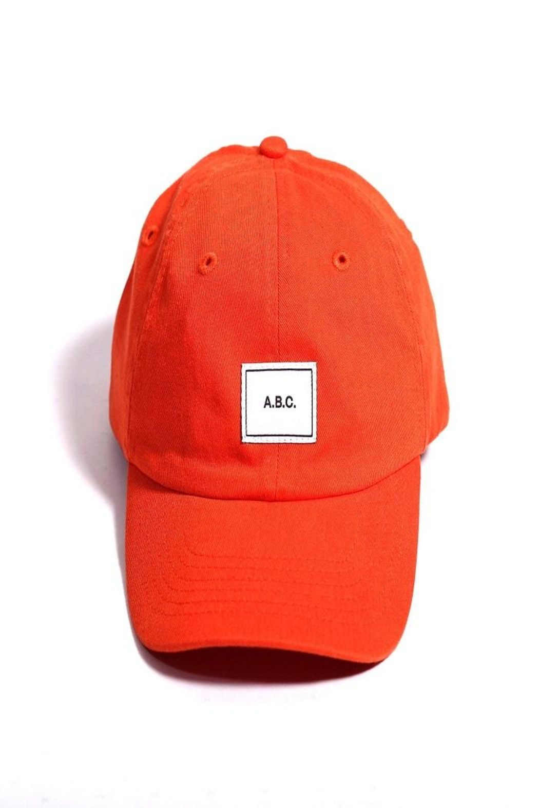 ABC Designs Kids Dad Hat - Front Cropped Image