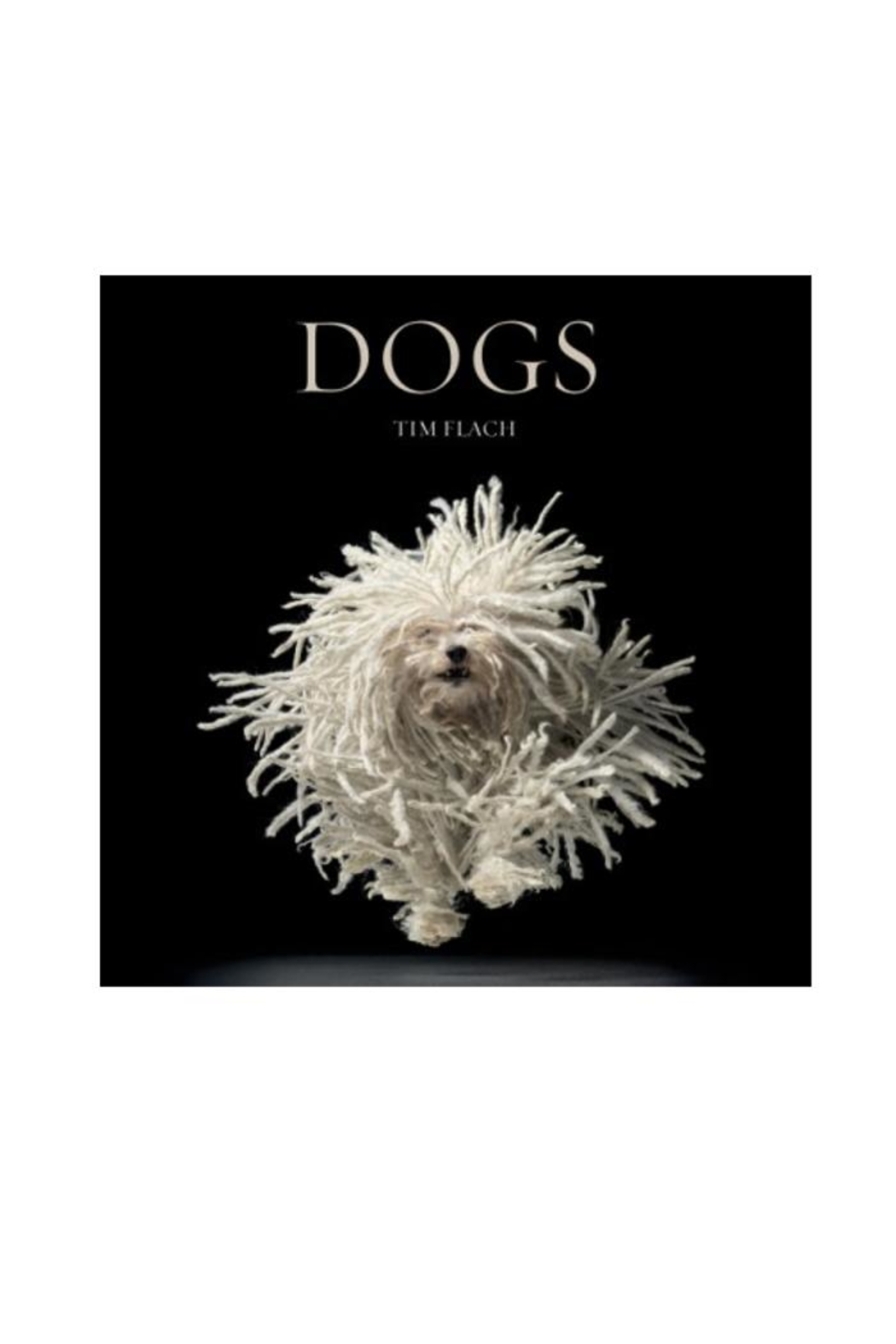 Abrams Books Dogs - Main Image