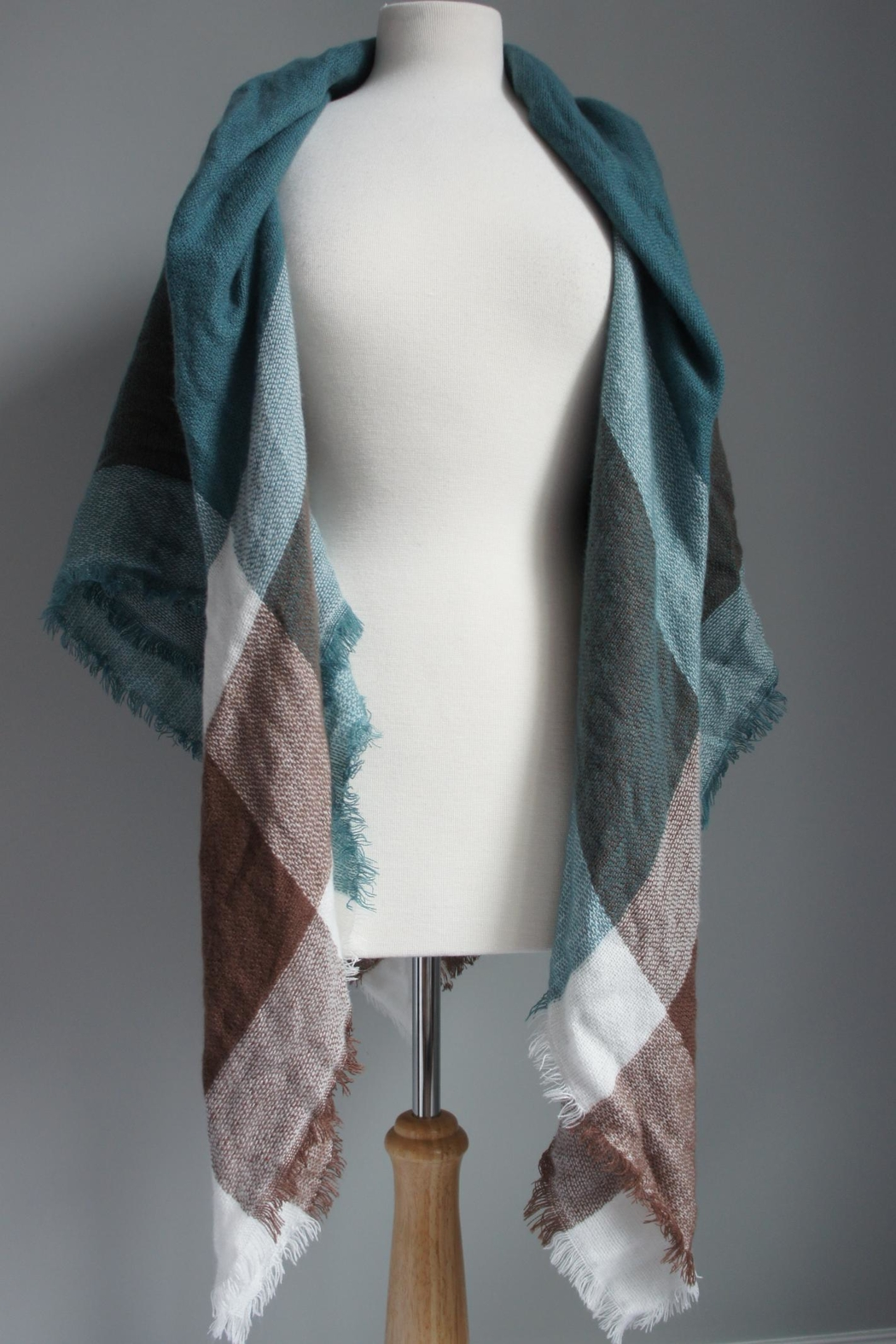 Accessory Concierge Blanket Shawl Scarf - Front Cropped Image