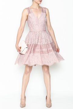 Shoptiques Product: Estelle Lace Dress