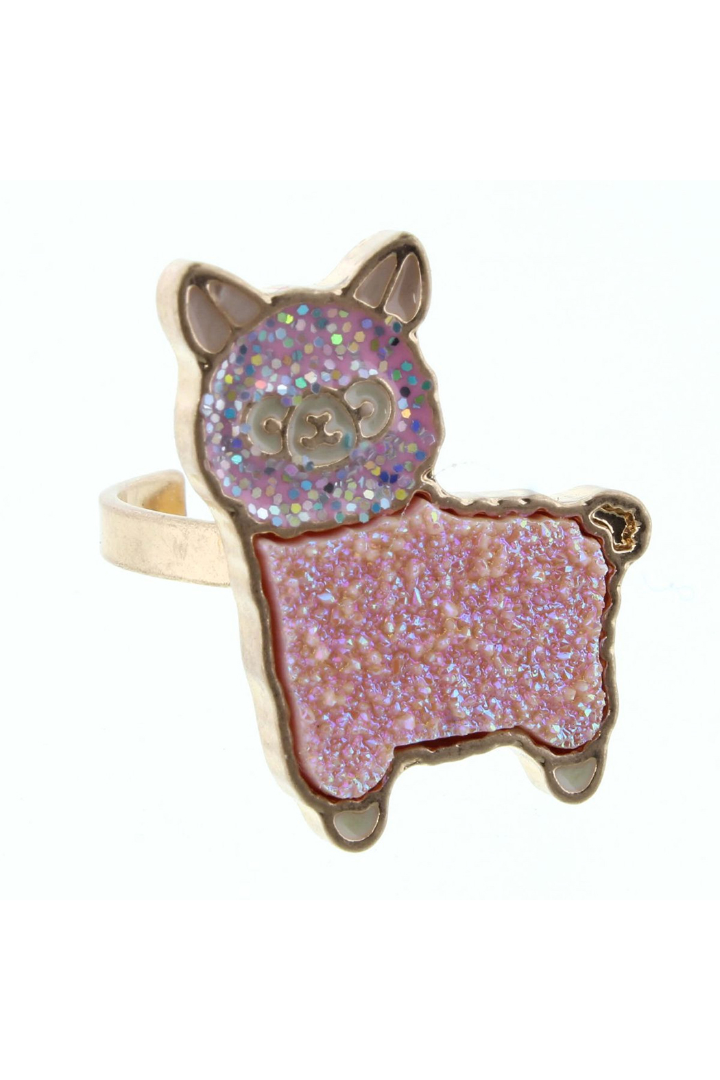 Jane Marie Adjustable Druzy Ring - Front Cropped Image