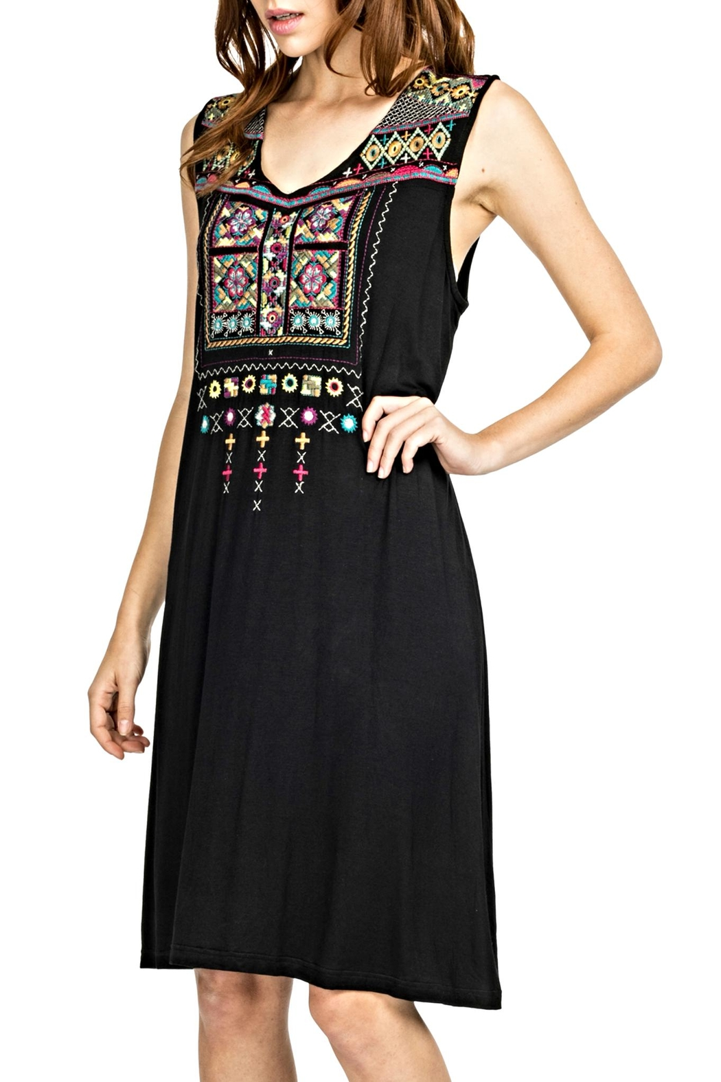Adore d Embroidered Dress - Main Image