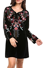 Adore Embroidered Velvet Dress - Product Mini Image