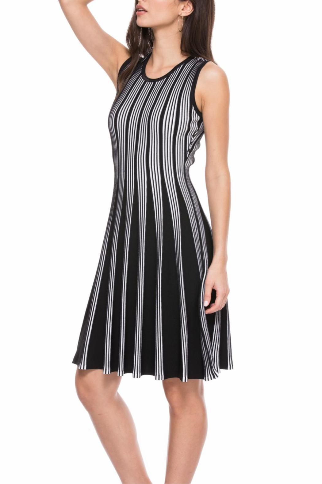 Adore Flare Reversible Dress - Front Full Image