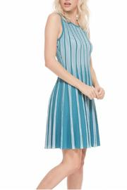 Adore Flare Reversible Dress - Front cropped