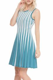 Adore Flare Reversible Dress - Front full body