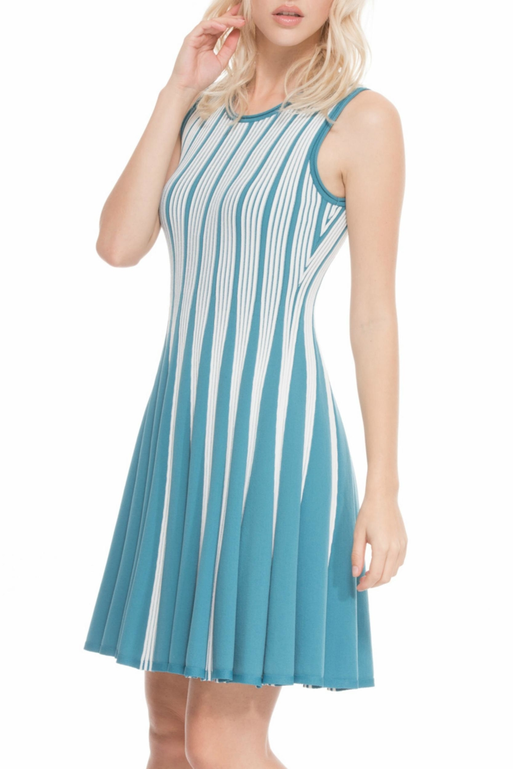 Adore Reversible Knit Dress from Chicago by What She Wants Boutique ...