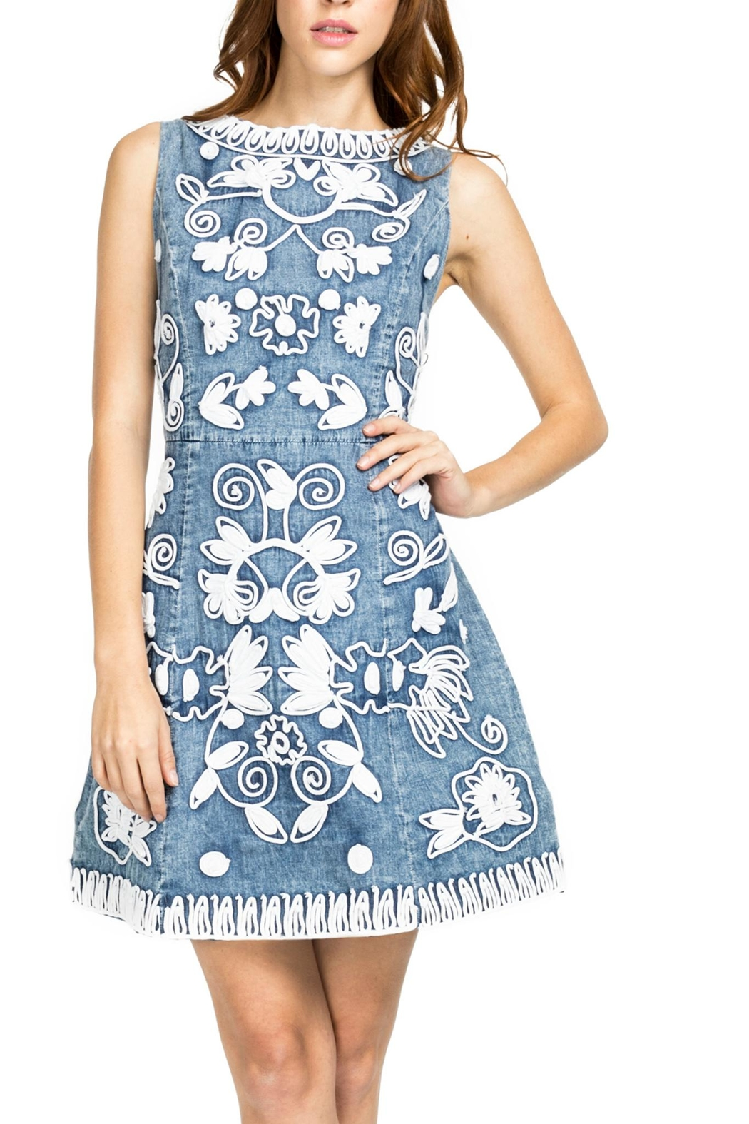 Adore Scroll Denim Dress - Front Cropped Image