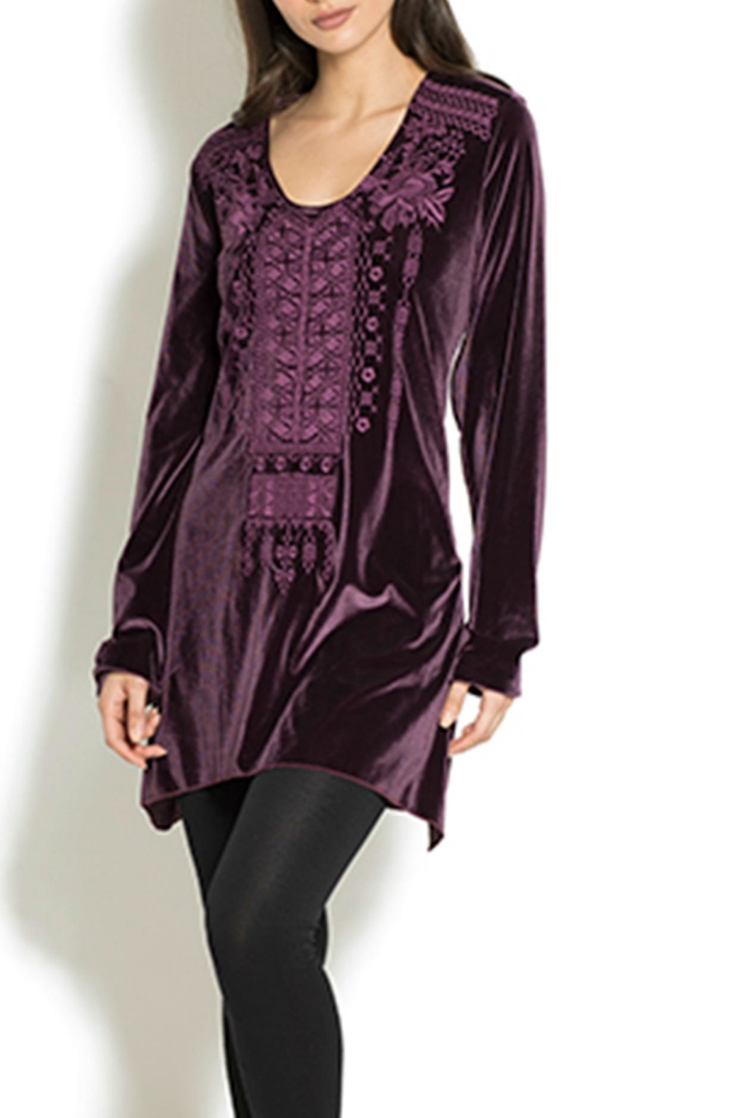 Adore Velvet Embroidered Tunic - Main Image