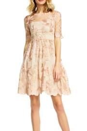 Adrianna Papell Embroidered Party Dress - Product Mini Image