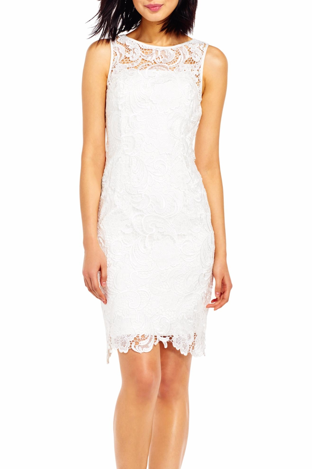 Adrianna Papell Ivory Dress - Front Cropped Image