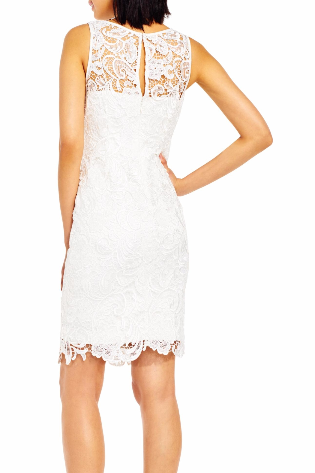 Adrianna Papell Ivory Dress - Front Full Image