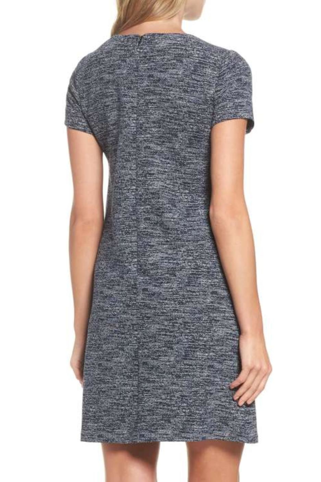 Adrianna Papell Knit Tweed Shift - Front Full Image