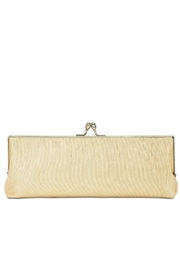 Adrianna Papell Nicola Mirrored Clutch - Front full body