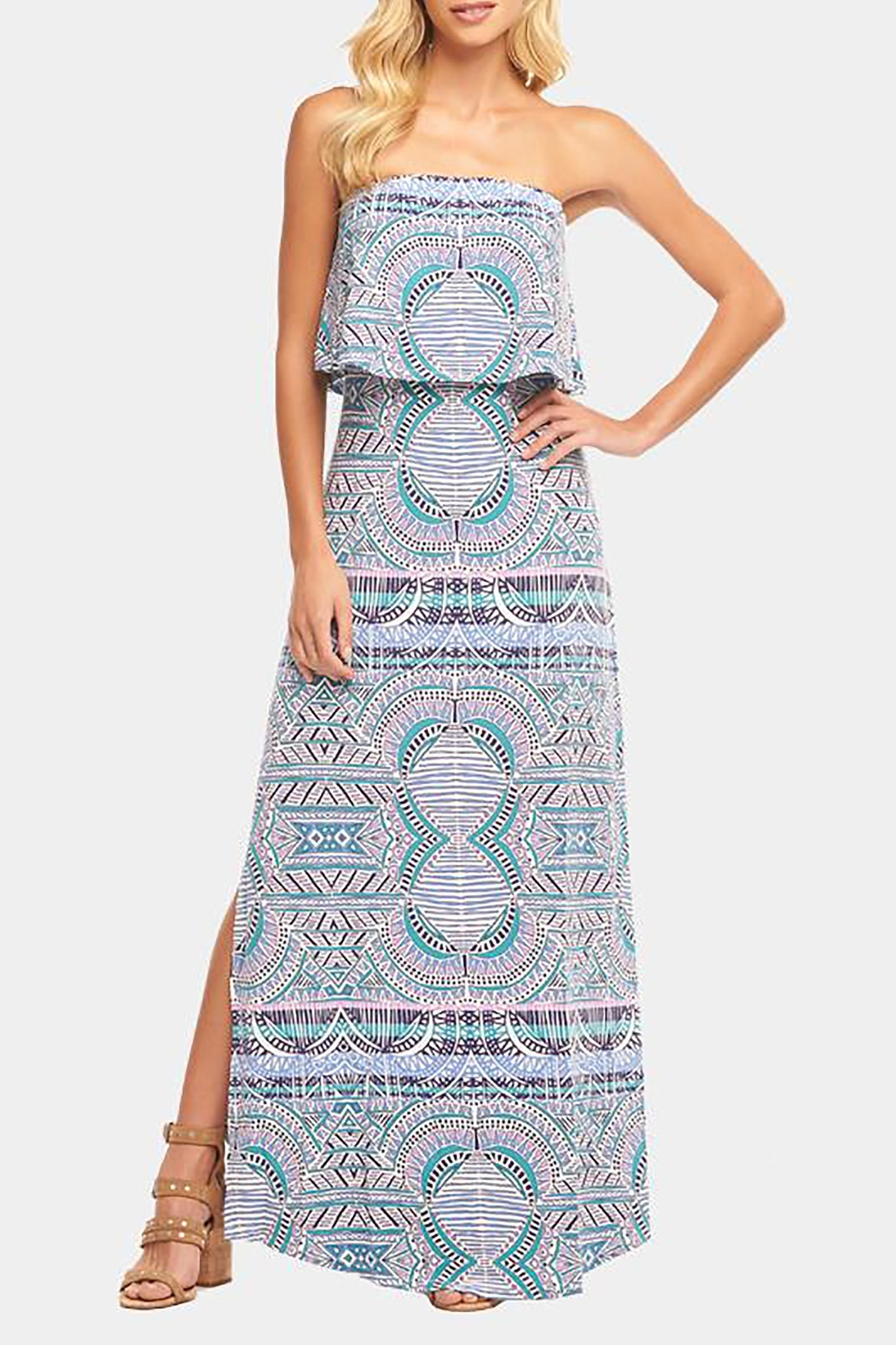 Tart Collections Aeryn Maxi - Front Cropped Image