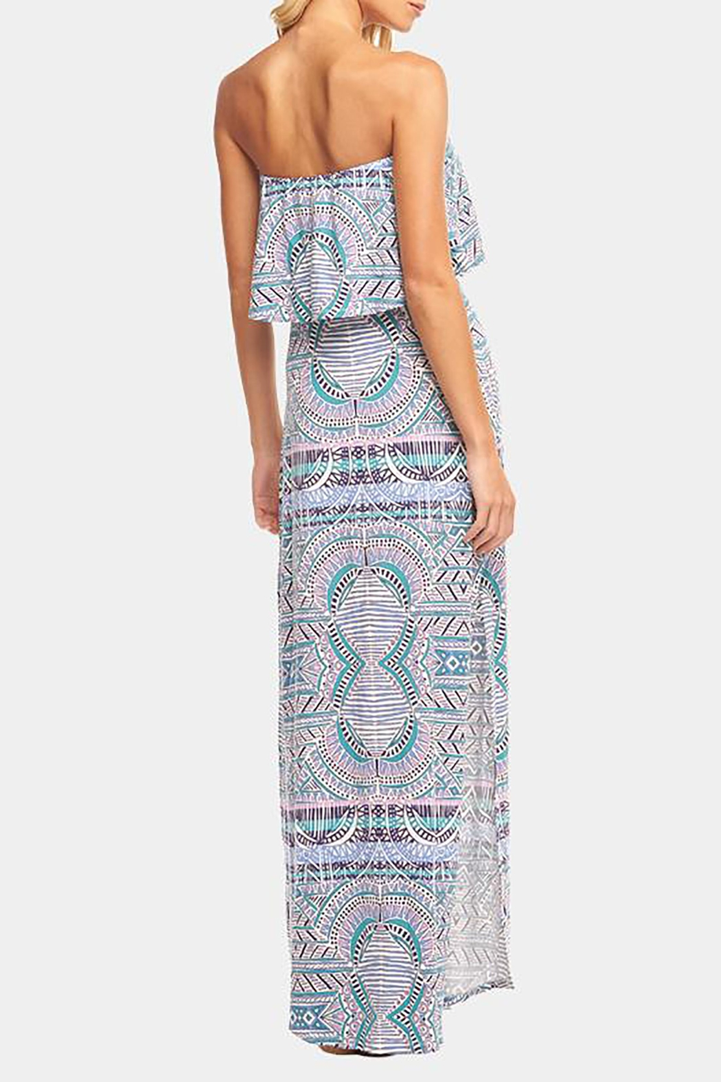 Tart Collections Aeryn Maxi - Back Cropped Image