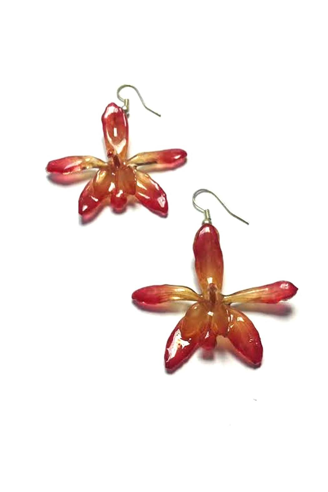 Lily Chartier Pearls Real Orchid Earrings - Main Image