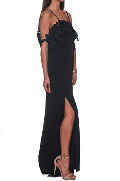 Shoptiques Product: Francesca Maxi Dress