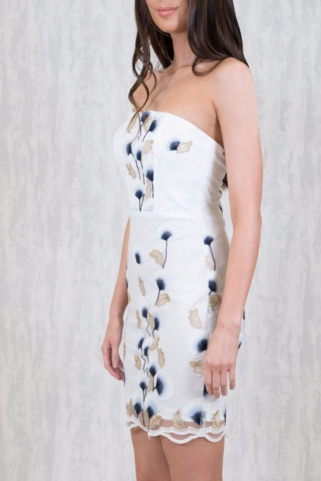 Ajoy Levora King City Dress - Front Full Image
