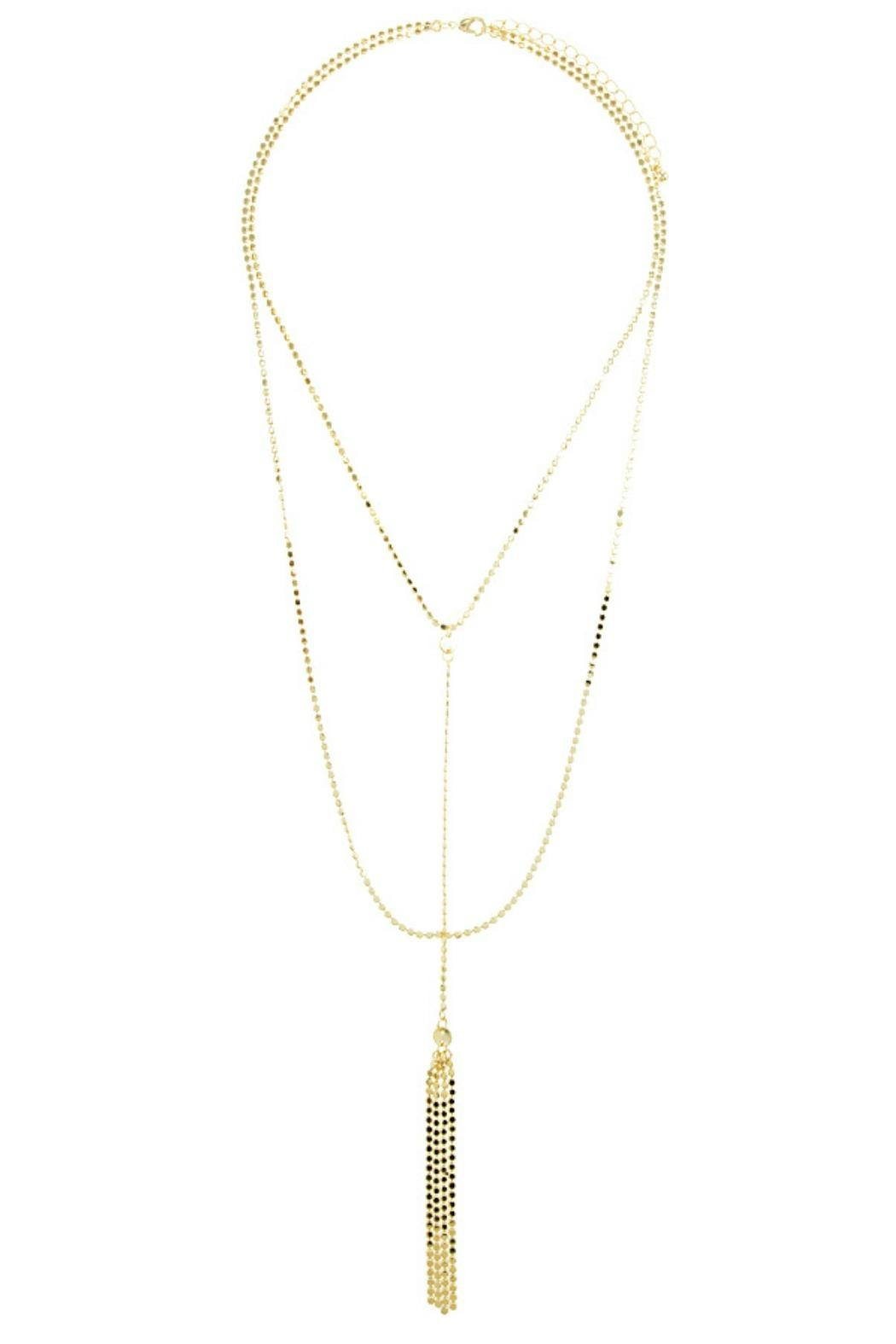 AL Boutique Delicate Layered Necklace - Front Cropped Image