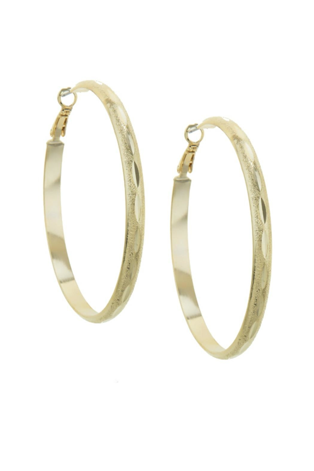 AL Boutique Textured Hoop Earring - Main Image