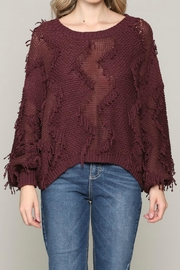 ALB Anchorage Fringe Pullover Sweater - Front cropped