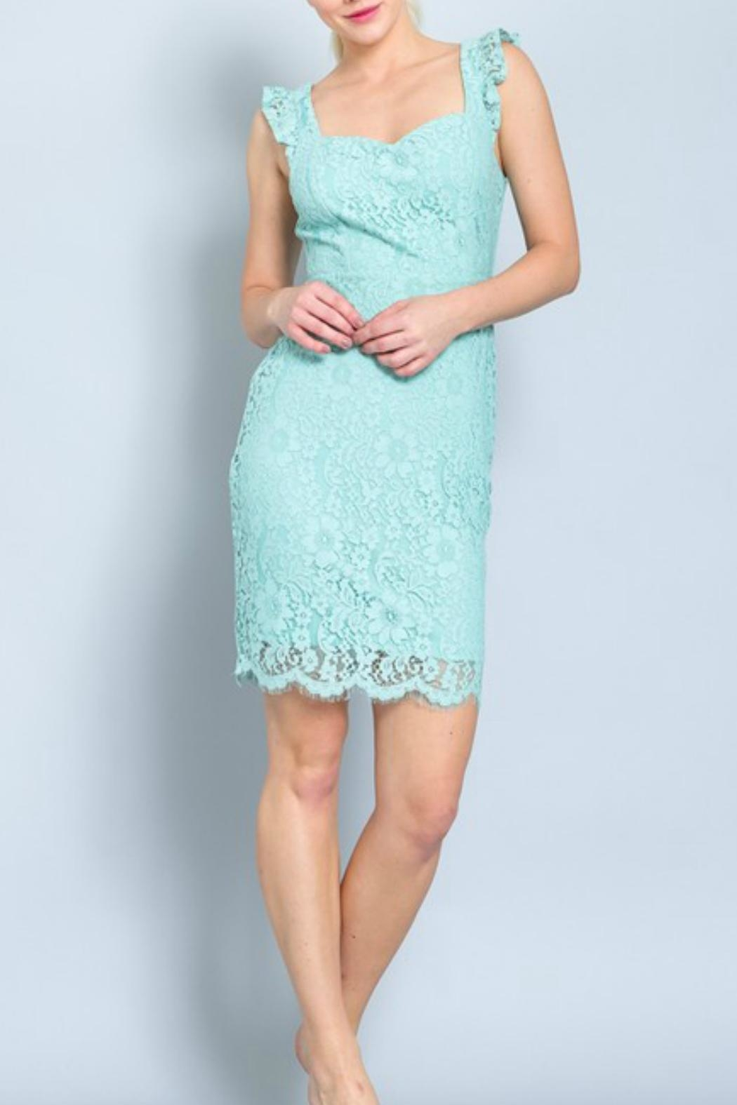 ALB Anchorage Lace Midi Dress - Back Cropped Image