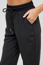 ALB Anchorage Woven Jogger Pants - Back cropped