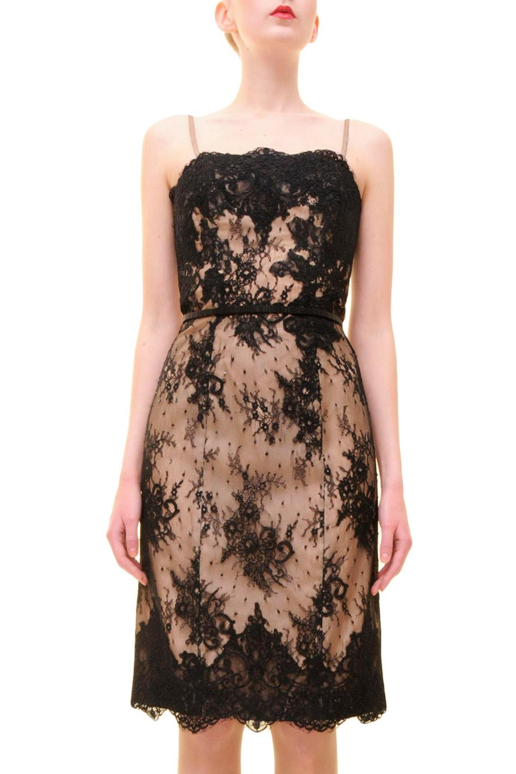 Alberre Odette Lace Cocktail Dress - Main Image