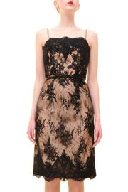 Alberre Odette Lace Cocktail Dress - Front cropped