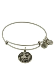 Alex and Ani Alex-And-Ani Sagittarius Bracelet - Product Mini Image