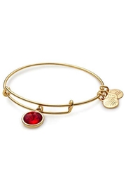 Alex and Ani Alex And Ani Birthstone
